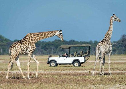 sunsafaris-zimbabwe-tour